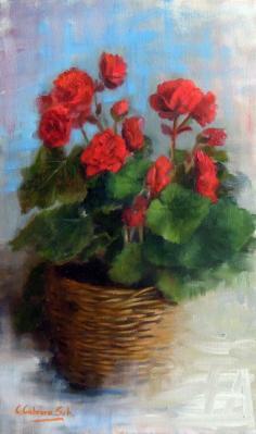 Flowers in flowerspot,
